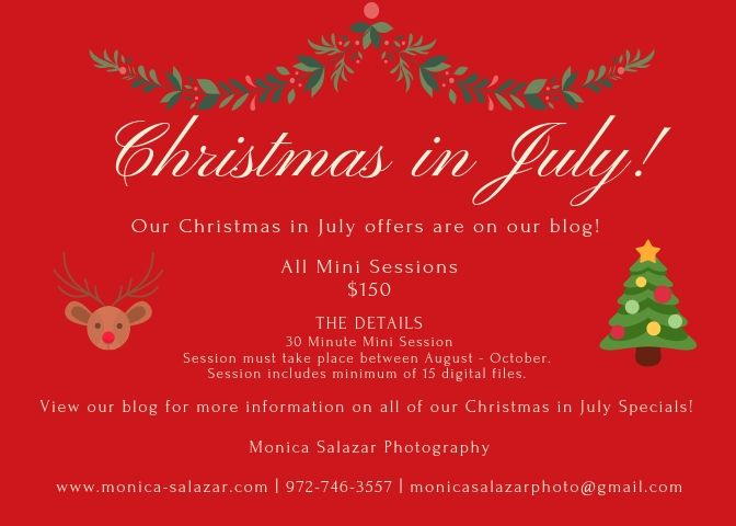 Christmas In July Wedding.Christmas In July Sale Wedding Photography Special Offers