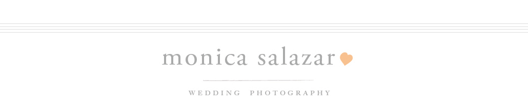 Dallas Wedding Photographer | Monica Salazar | Fort Worth Engagement Photography logo